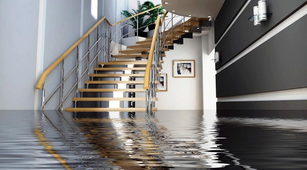 flood-restoration-maroubra-1